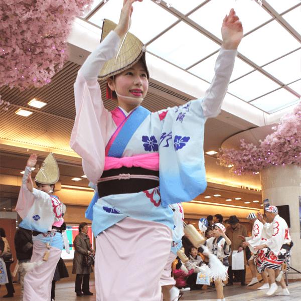 阿波踊り de ヤットサー